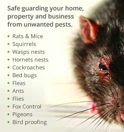 Safe guarding your home, property and business from unwanted pests.