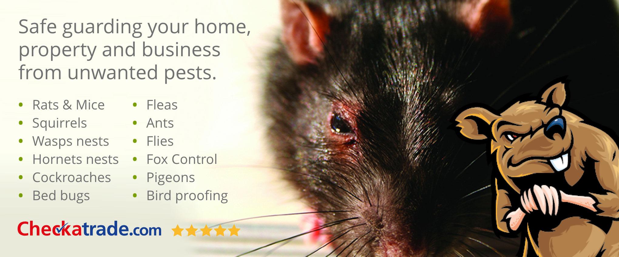 Power Pest Control