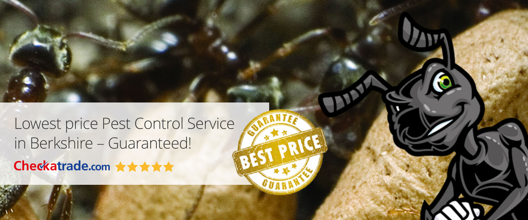 Power Pest Control Berkshire